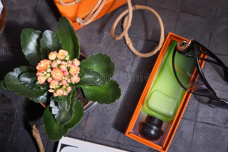 Fashion lady set with fragrance and flower around black background stock photo