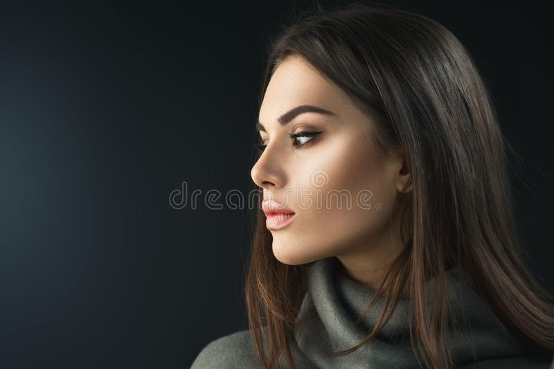 Fashion model brunette girl. Beauty portrait of woman with professional makeup royalty free stock photos