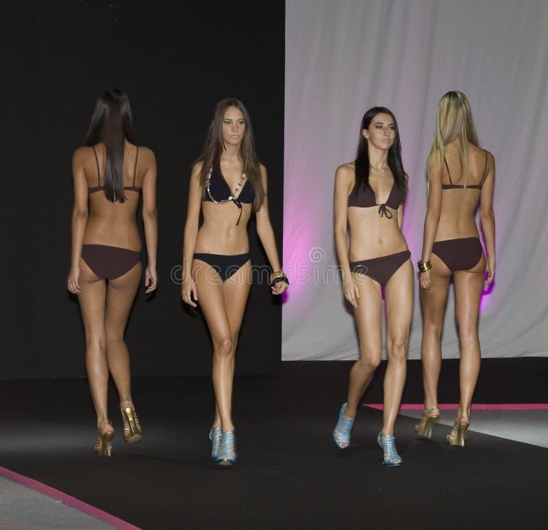 Download Fashion parade editorial image. Image of fashion, designer - 16027310