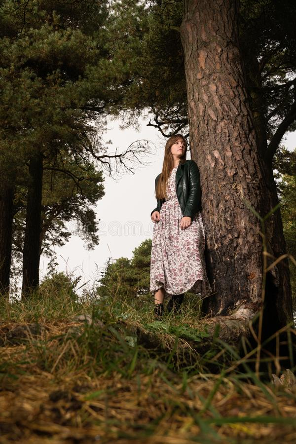 Fashion photo of young beautiful woman posing in forest near big tree royalty free stock photos