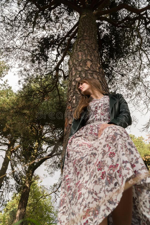 Fashion photo of young beautiful woman posing in forest near big tree stock image