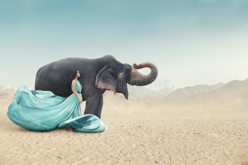Fashion portrait of young woman posing next to elephant royalty free stock image