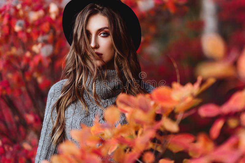 Fashion woman on a background of autumn leaves royalty free stock photos