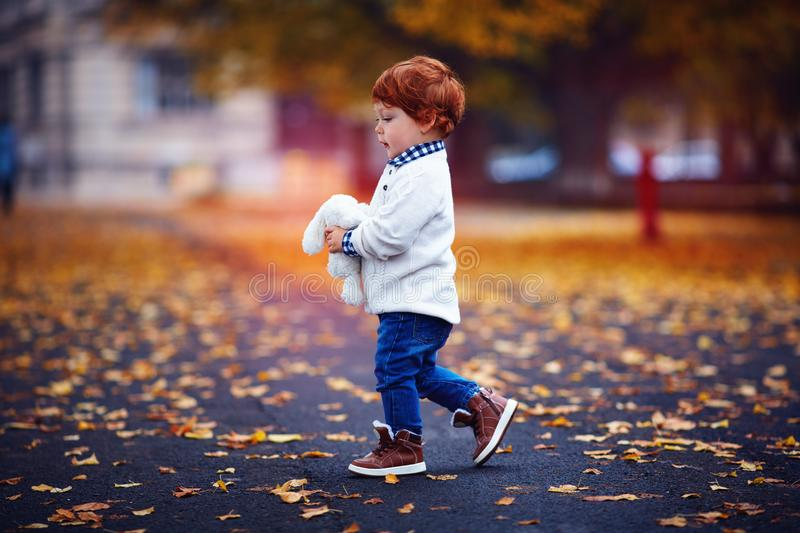 Cute redhead toddler baby boy walking in autumn park with plush toy in hands. Fashionable cute redhead toddler baby boy walking in autumn park with plush toy in royalty free stock image