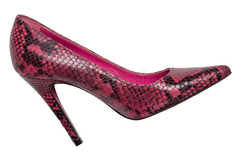 Fashionable female high heels. A pair of purple high-heeled female shoes isolated on a white background. Shoes from snakeskin stock images