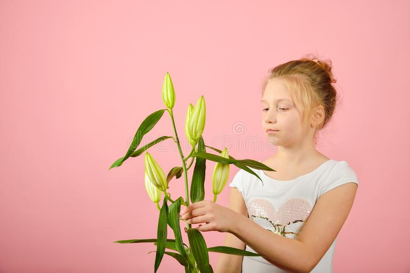 Fashionable and glamorous girl with a flower in the studio on a pink background royalty free stock photo