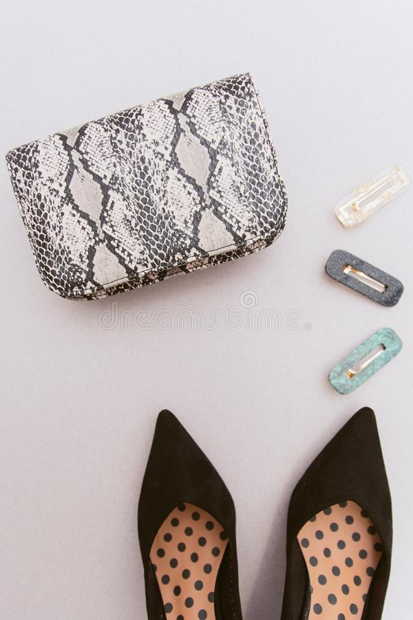 Fashionable hairpins, a snakeskin bag with an animal print and black women`s shoes on a beige pastel background. The royalty free stock image