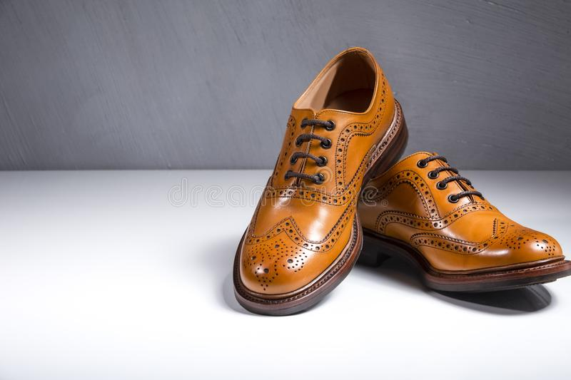Fashionable Luxury Male Full Broggued Tan Leather Oxfords Shoes. Placed Over White Surface. Against Gray Wall Background. Horizontal Image Composition royalty free stock images