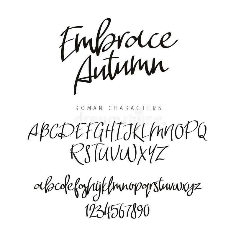 Download Fashionable Modern Font Calligraphy Stock Vector