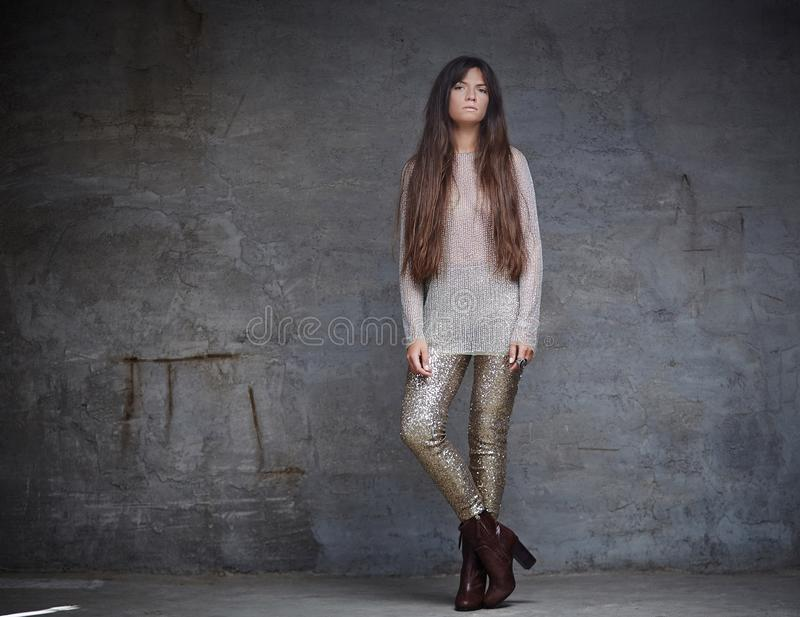 Fashionable woman with long brown hair. stock photography