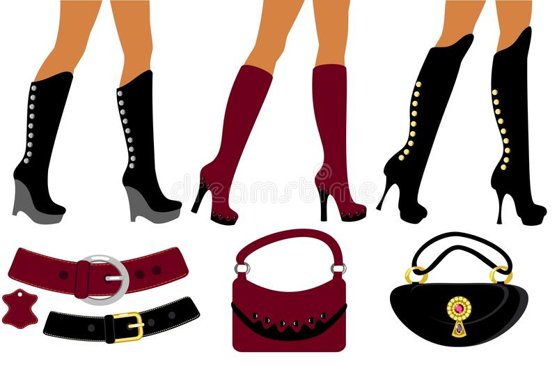 Download Fashionable Women's Footwear Stock Vector - Illustration: 19553150