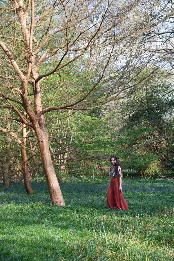Fashionable lady in an English wood with bluebells and trees royalty free stock photo