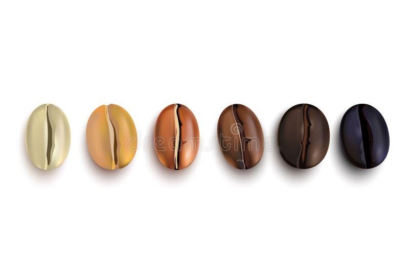 Fasi dell'arrosto dei chicchi di caffè illustrazione di stock