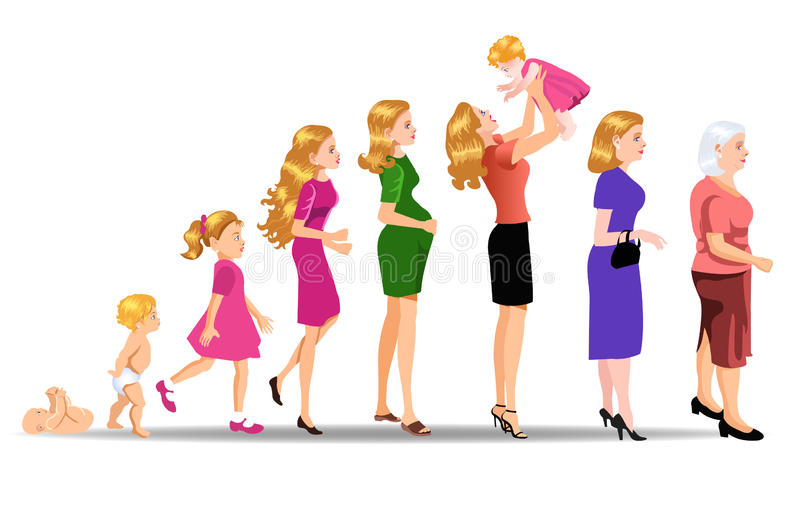 Fasi della donna di sviluppo illustrazione vettoriale