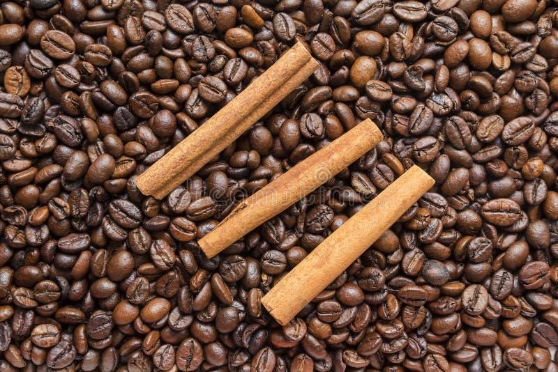 fasola kije cynamonowi kawowi zdjęcie stock