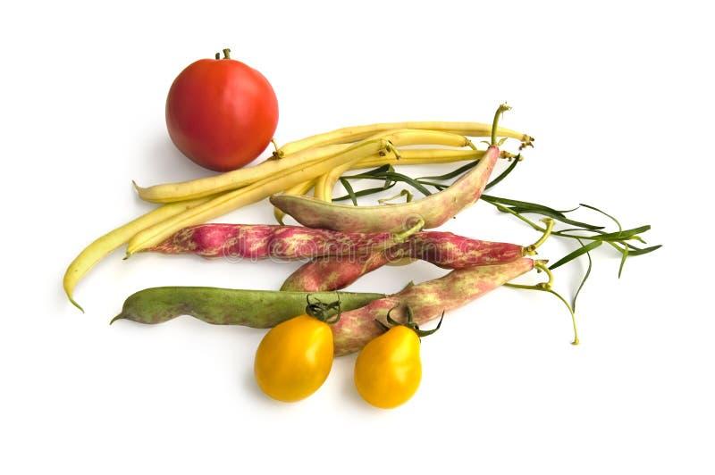 fasola pomidory zdjęcia stock