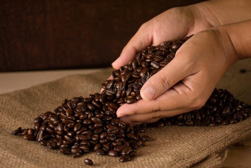 fasole zamykają kawowe ręki kawowy obraz stock