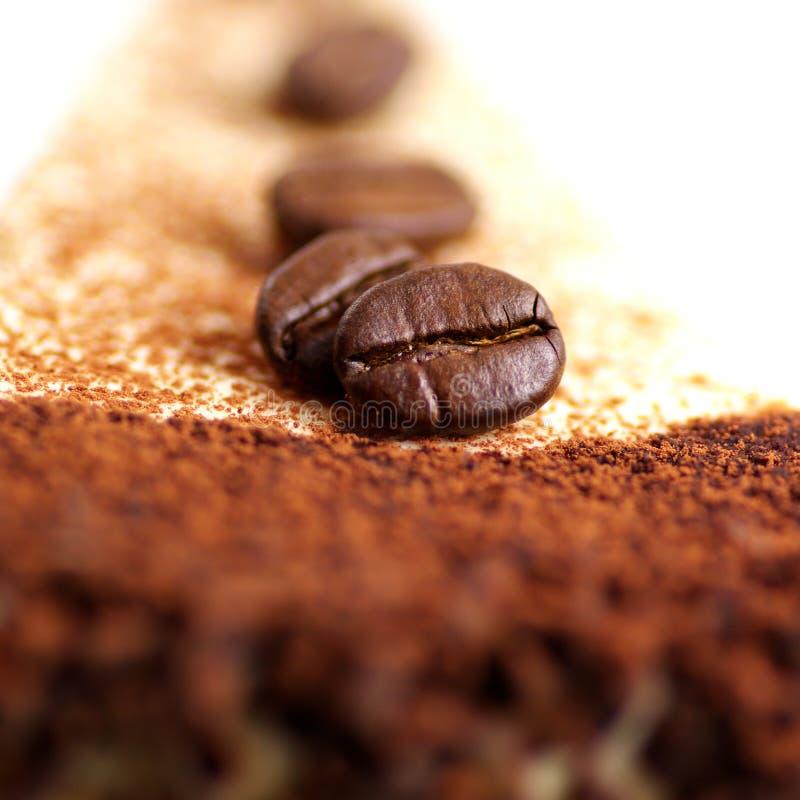 fasole zasychają kawę zdjęcia royalty free