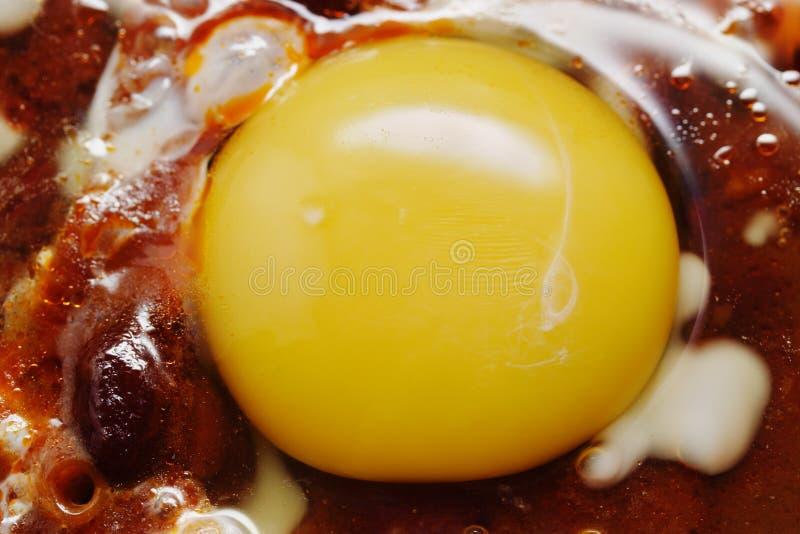 fasoli jajek dłoniaka czerwień fotografia royalty free