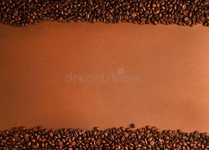 fasoli kawy lampasy zdjęcie royalty free