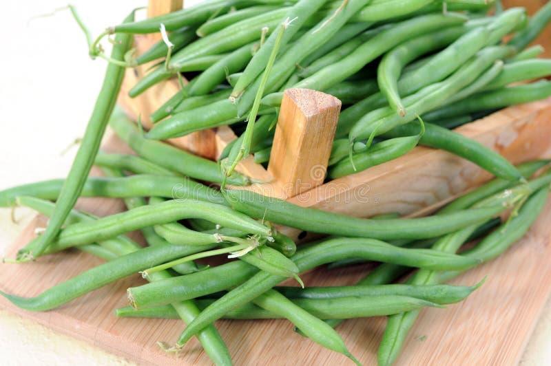 Fasolka szparagowa zdjęcie stock