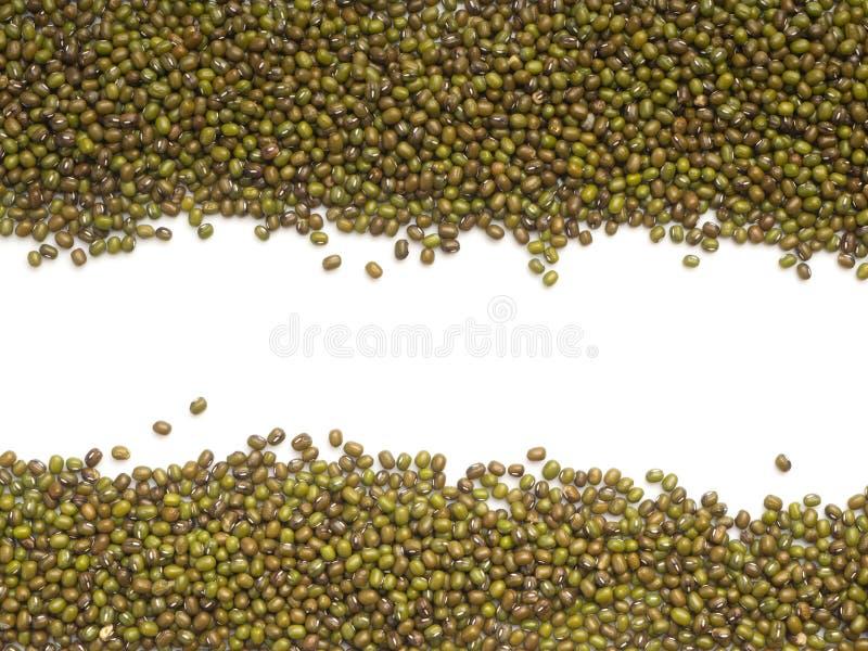 Fasolki szparagowej lub Mung fasoli tło zdjęcie stock