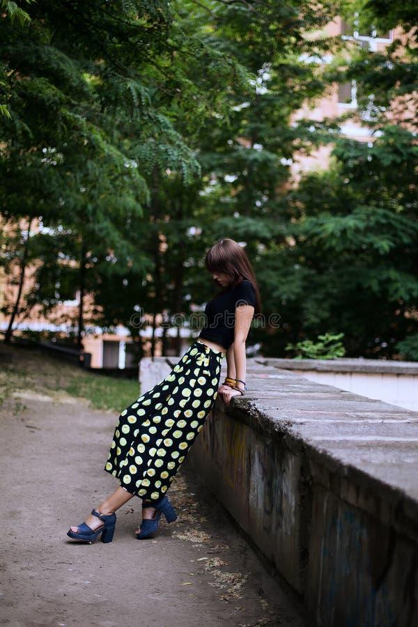 Fasonuje plenerowego portret elegancka brunetki kobieta na ulicie zdjęcie stock