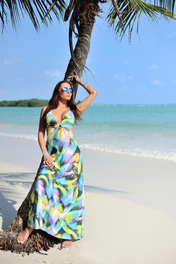 Fasonuje portret piękna elegancka kobieta blisko drzewka palmowego na a obraz royalty free
