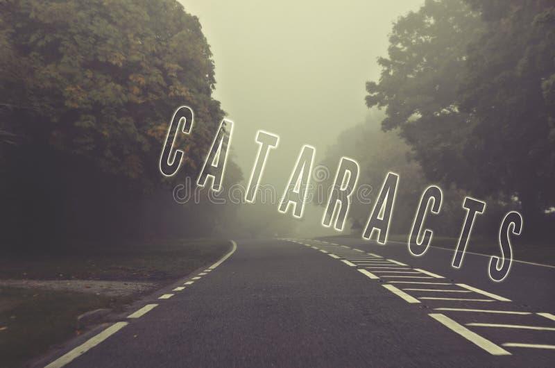Fassen Sie die Katarakte ab, die auf nebelige, unscharfe Straße, Gefahrenherbst Roa geschrieben werden lizenzfreie stockfotografie