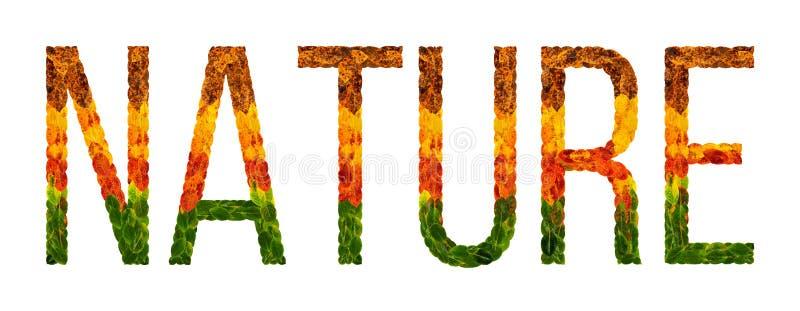 Fassen Sie die Natur ab, die mit lokalisiertem Hintergrund der Blätter Weiß, Fahne für den Druck, kreative Illustration von farbi stock abbildung