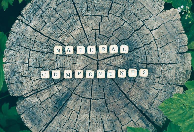 Fasst natürliche Komponenten von Alphabetperlen auf einer Baumstumpfoberfläche im Wald ab lizenzfreie stockfotografie