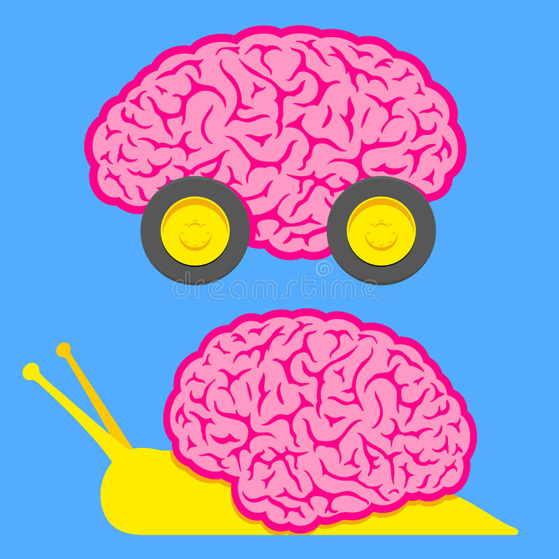 Fast brain on wheels and slow snail brain vector illustration
