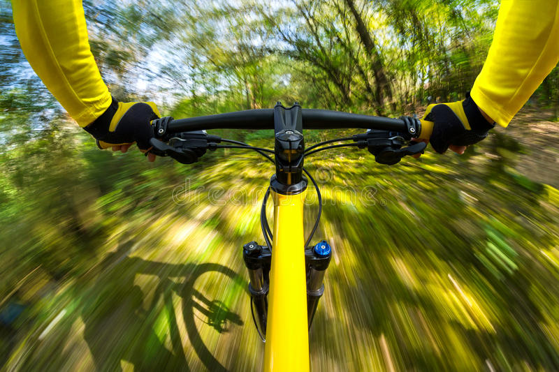 Fast dynamic bicycle. In the woods royalty free stock image