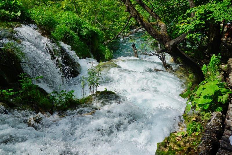 Fast Flowing Rapid, Plitvice Lakes, Croatia. Fast flowing narrow rapid, Plitvice Lakes, Plitvice National Park, European Union, Dalmatia, a UNESCO World Heritage royalty free stock photo