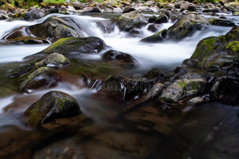 A fast flowing shallow creek runs over algae covered pebbles and rocks in Olympic National Park, Washington State, USA. Long exposure to add blurred motion to stock image