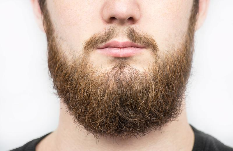 Fast man med skägget och mustaschen Closeupstående av den idrotts- skäggiga mannen Stilig stilfull skäggig man Sexig man som är m royaltyfri bild