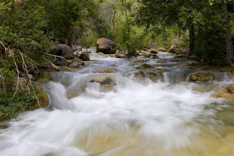 Download Fast Moving Creek In Forest Stock Photos - Image: 11643863