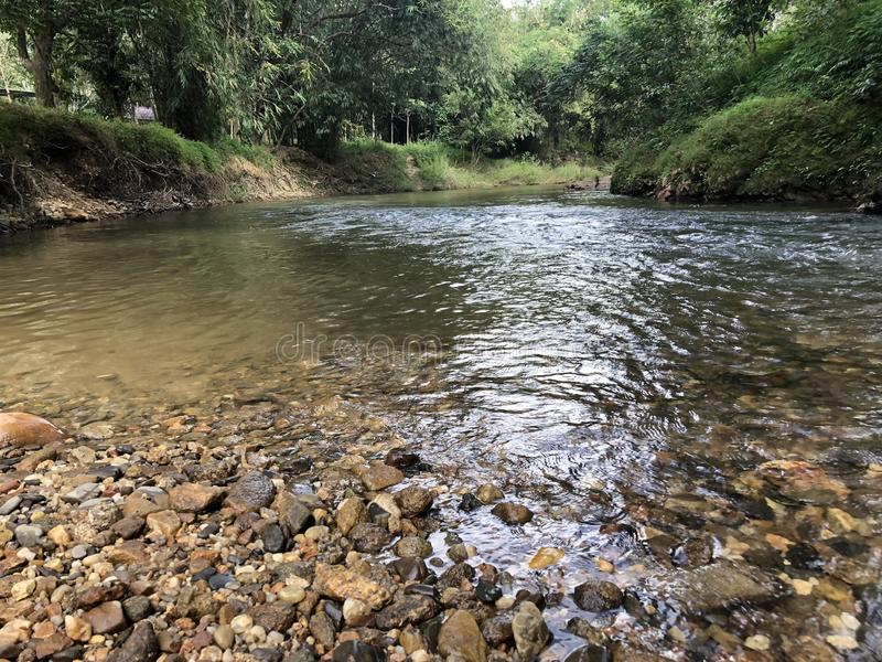 Fast running river in the jungle with beautiful stones , clear water and tropical vegetation in Thailand in Phuket stock photos