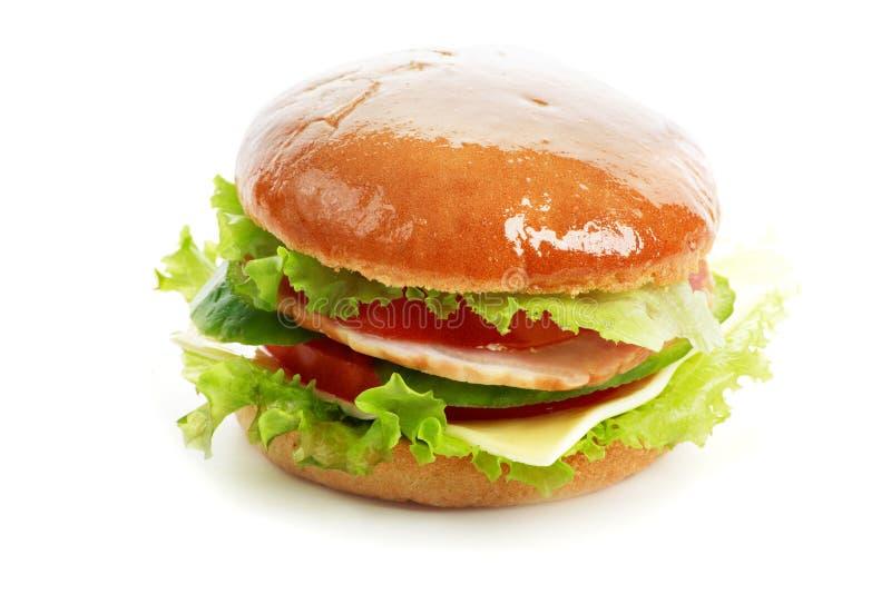 Fast sandwich stock photography