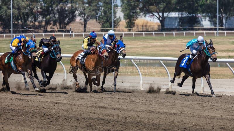 Fast Track. Jockey on his ride at the Cal Expo horse races in Sacramento California stock photos