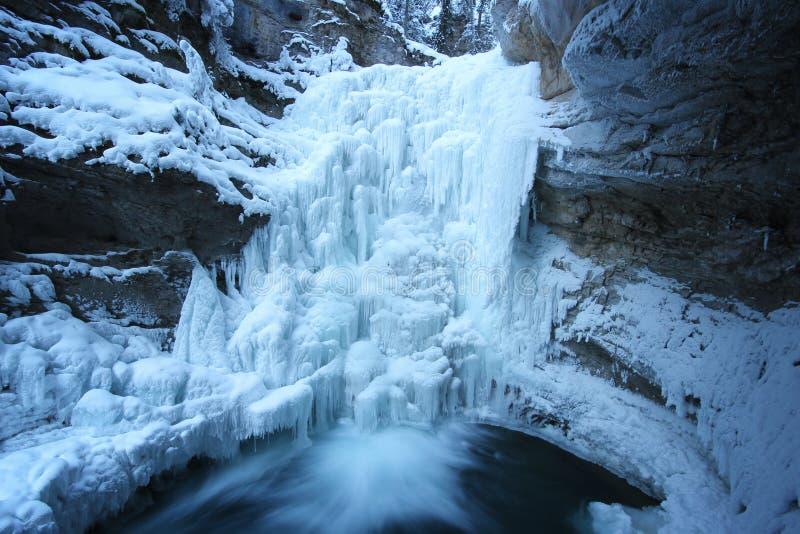 Fast vaggar flödande vatten från den biig fryste vattenfallet med täckt snö omkring, Johnston Canyon, den Banff nationalparken, K royaltyfri foto