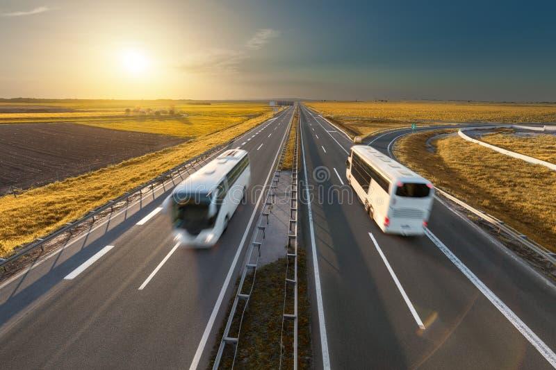 Fasten Reisebusse auf der Autobahn bei idyllischem Sonnenuntergang lizenzfreie stockbilder