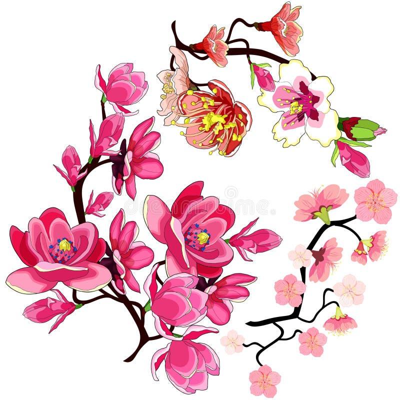 Fastställd blomning för mandel för filialmagnoliablomma, sakura körsbär vektor royaltyfri illustrationer