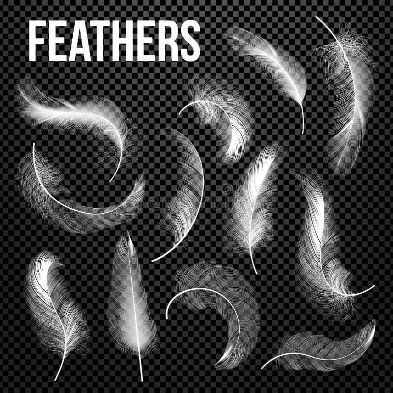 Fastställd vektor för fjädrar Olika fallande vita fluffiga snurrade fjädrar Fjäderfågel, mjuka vita Plume Design insomnia stock illustrationer
