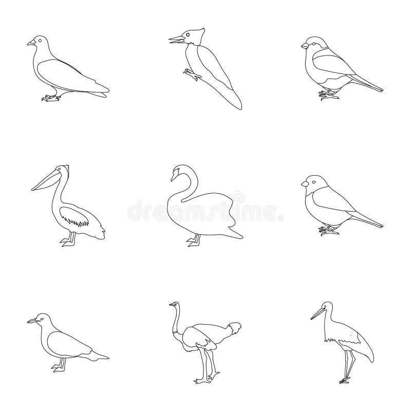 Fastställda symboler för fågel i översiktsstil Stor samling av illustrationen för materiel för fågelvektorsymbol stock illustrationer