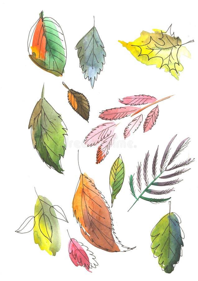 Fastställda vattenfärgmålningar som isoleras på vit bakgrund Bär för gemkonst, kulöra sidor vektor illustrationer