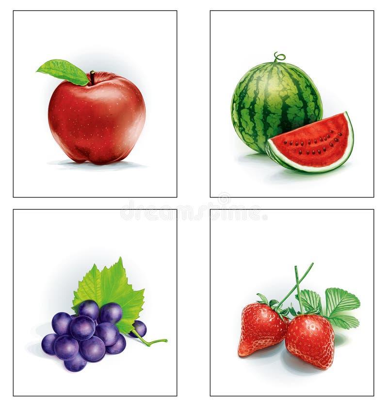 Fastställt fruktäpple och vattenmelon och druvor och jordgubbar royaltyfria foton