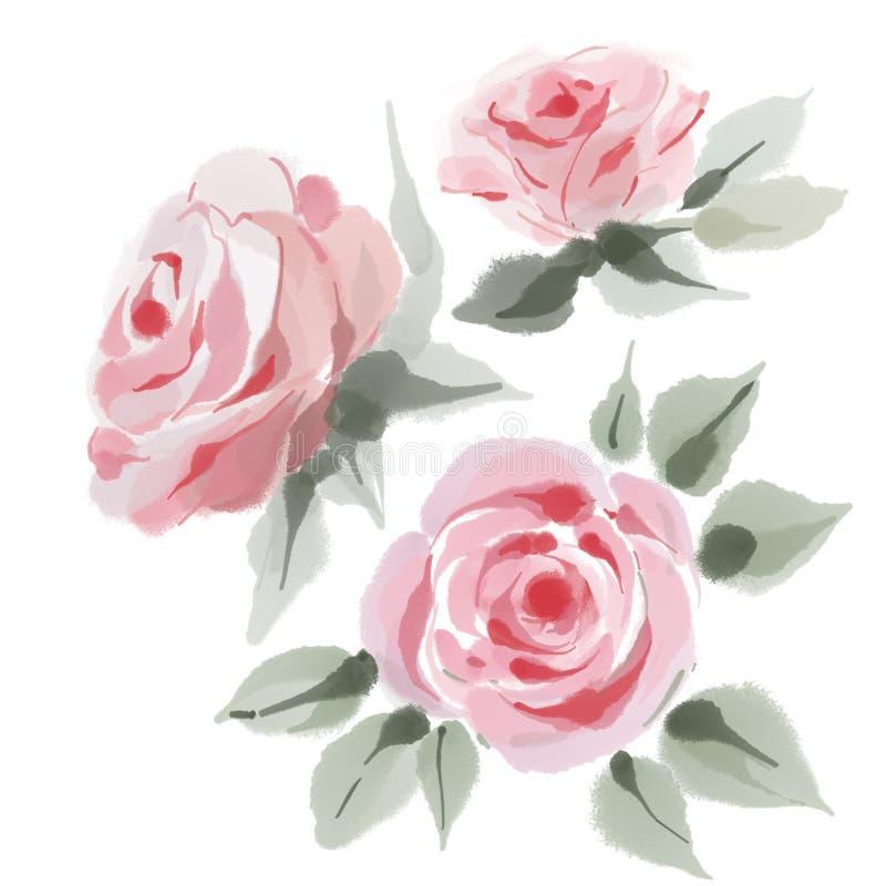 Fastst?llda rosor, vattenf?rg, kan anv?ndas som h?lsa kort, inbjudankortet f?r br?llop, f?delsedagen och annan ferie och sommar stock illustrationer