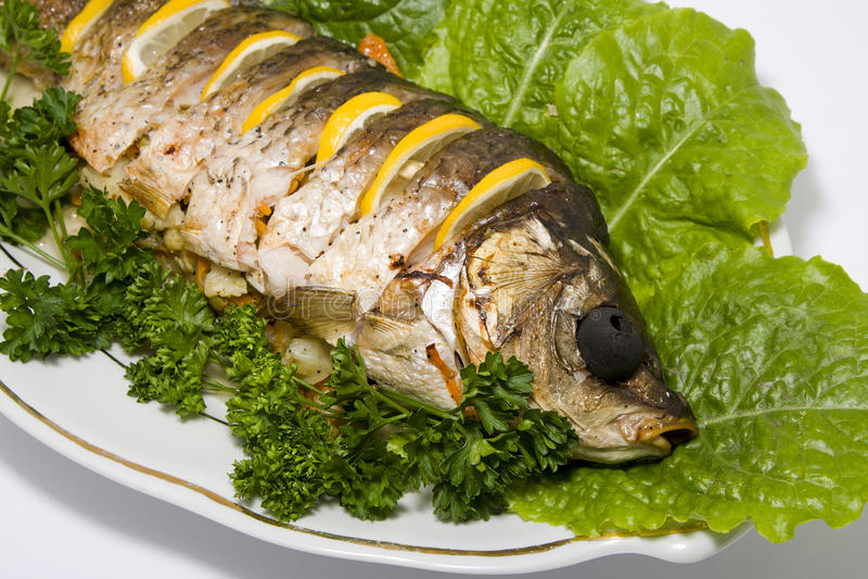 faszerująca karp ryba zdjęcie royalty free