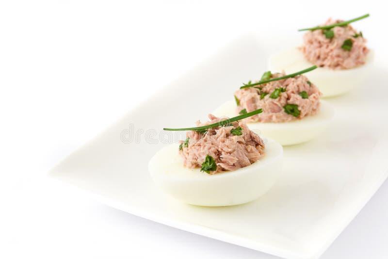 Faszerujący jajka z tuńczykiem odizolowywającym obrazy royalty free